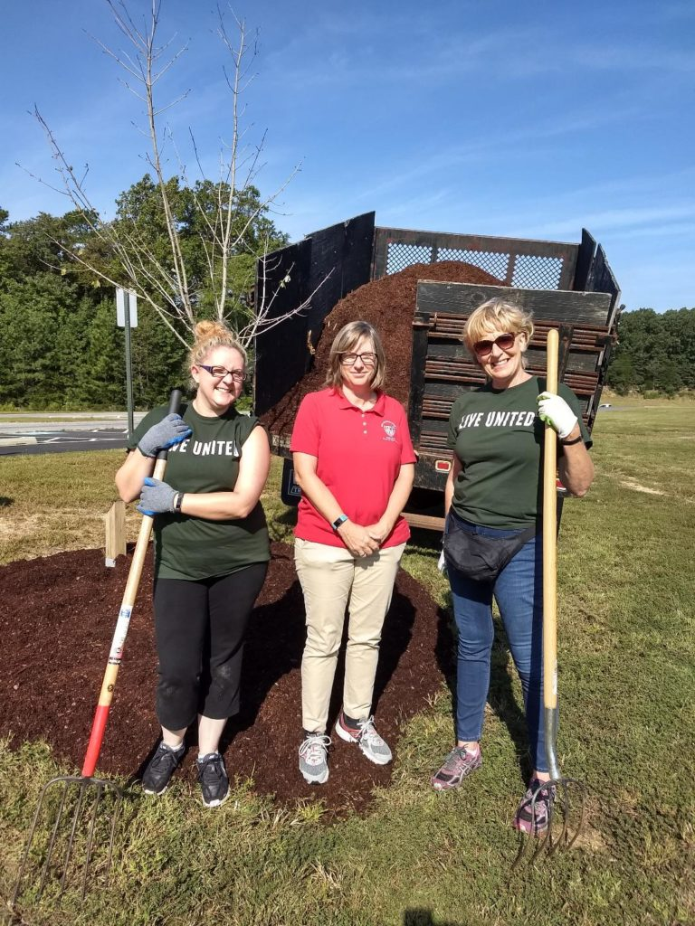 Hilldrup employees plant trees