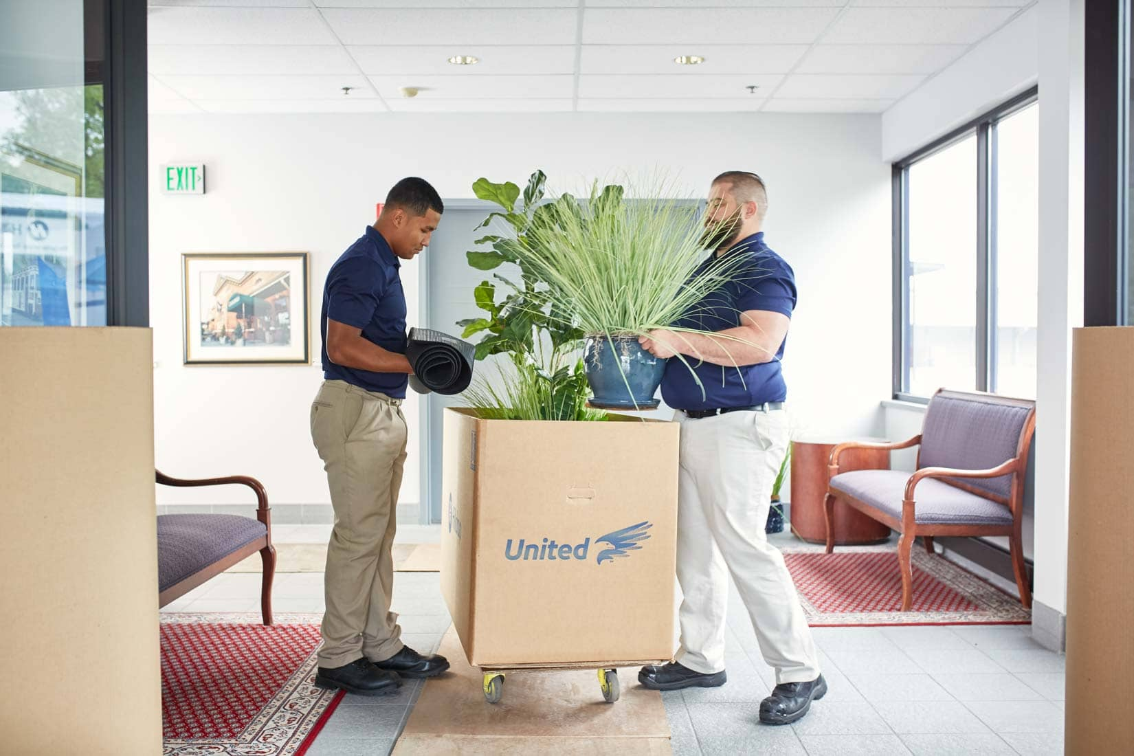 Hilldrup employees packing office items into a box