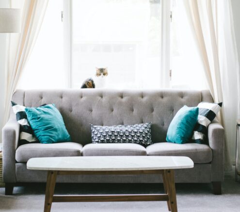 Picture of a living room with a gray couch and teal pillows, against a window.